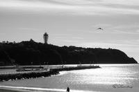 初冬の江ノ島 - jumhina biyori*