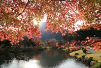 種まき権兵衛の里の紅葉 - みちはた写真館フォトギャラリー
