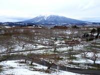 りんごの家自家製タルトタタン:弘前市りんご公園 - 津軽ジェンヌのcafe日記