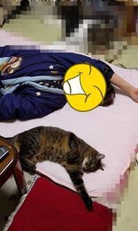 二人でシンクロ - 長老猫とマミーの徒然日記