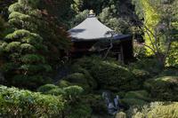 秩父30番札所 瑞竜山法雲寺 - 風の彩り-2