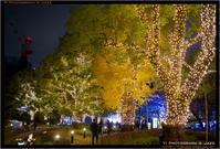 六本木クリスマス Part 2 - TI Photograph & Jazz