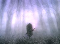 霧のなかのハリネズミ - aoko memo