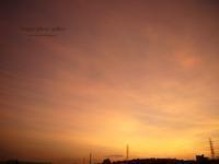 beautiful days - Happy photo gallery Ⅱ