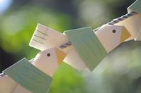 千駄ヶ谷/新宿御苑/歌舞伎町  奇跡の「こばた」 - 東京雑派  TOKYO ZAPPA