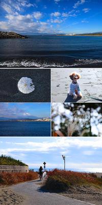 2016/12/11(SUN) 週末の海辺..........。 - SURF RESEARCH