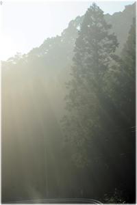 林道の雨上がり - 写真画廊 ナカイノブカズ 2
