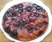 ベリーのケーキ&パクチーのパンケーキ - 葉っぱ=64 PART2