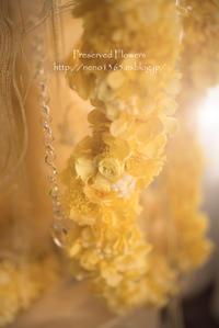 preserved flowers - ぽとすのくずかご