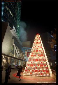 六本木クリスマス Part 4 - TI Photograph & Jazz