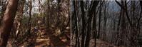 2016.12.6 山梨県・毛無山 富士山   2016.12.20 (記) - たかがヤマト、されどヤマト