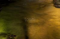 魅惑の飛鳥川 - toshi の ならはまほろば