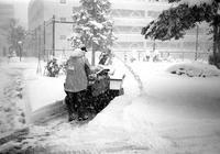 ドカ雪の除雪作業と久しぶりのフィルム現像 - 照片画廊