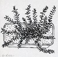 水木しげるさん 幸福の7ヶ条 - たなかきょおこ-旅する絵描きの絵日記/Kyoko Tanaka Illustrated Diary