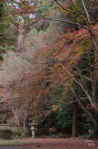 桜井市 穴師の寂しき灯篭 - ぶらり記録(写真) 奈良・大阪・・・