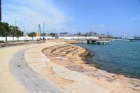シドニー 砂岩のブロックを使った海辺のプロムナード - アーバン・ガーデン・ウォッチング