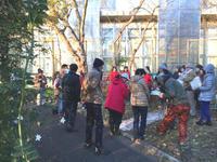 12月作業後の納会+ガーデンパーティ - 駒 場 バ ラ 会 咲く 咲く 日 誌