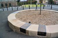 シドニーと日本でのピーター・ウォーカーのシマシマのデザイン - アーバン・ガーデン・ウォッチング