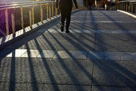 The morning sunlight - Wayside Photos  ☆道端ふぉと☆