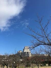 誕生日旅行は赤穂へ(姫路城編) - ホリー・ゴライトリーな日々