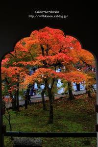京都永観堂 - *花音の調べ*