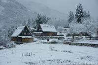 富山散歩~県西部275~雪の五箇山合掌集落-2- - Tomの一人旅~気のむくまま、足のむくまま~
