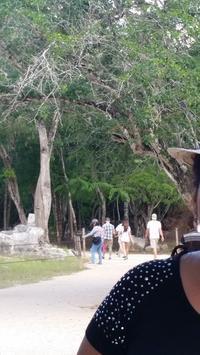 メキシコのchichenitzaを観光 - Leonardo DiCaprio