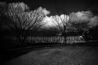 この季節の空は積乱雲だったり! - Yoshi-A の写真の楽しみ