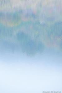 水上のブルース - ひつじ雲日記