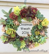Christmas Wreath - メルボルン奮闘日記2