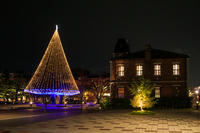Big Christmas Tree(同志社大学) - 花景色-K.W.C. PhotoBlog