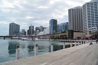 シドニー ダーリング・ハーバーの再開発 - アーバン・ガーデン・ウォッチング