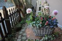ライトグレイッシュトーン - CHIROのお庭しごと