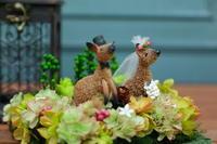 12月18日単発プリザーブドレッスンと12月~3月の単発レッスン日程(一部変更あり) - 一会 ウエディングの花