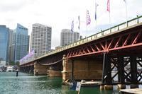 シドニー ダーリング・ハーバーの橋 - アーバン・ガーデン・ウォッチング