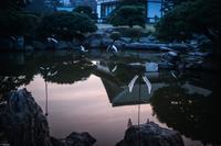 徳島LEDアートフェスティバル2016 - ミズタマリ