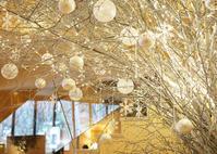 """味わえるチャンスはあと2日!ホテルブレストンコート スイーツコース""""ムニュ・デゼール""""のクリスマス♪ - きれいの瞬間~写真で伝えるstory~"""