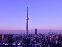 東京スカイツリーー12月20日 - View in mind