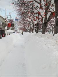 大雪 - はあと・ドキドキ・らいふ