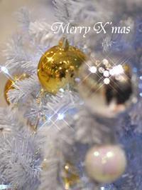 MERRY CHRISTMAS - Blue Planet Cafe  青い地球を散歩する
