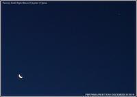 月と木星とスピカの三角形 - 野鳥の素顔 <野鳥と・・・他、日々の出来事>