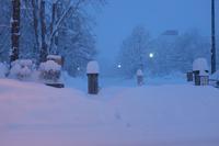 昨日はまた大雪 - なよら風
