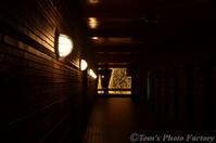 富山散歩~県東部376~富岩運河環水公園「冬のイルミネーション」 - Tomの一人旅~気のむくまま、足のむくまま~