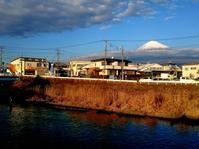 富士の湧水 〆釣行 - 弾丸Fisher 花よりライズ