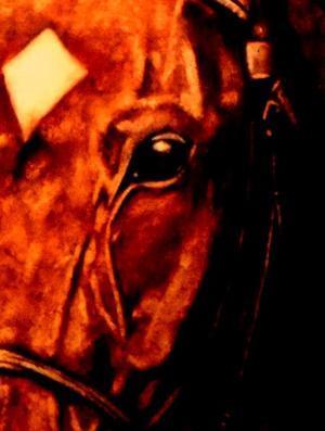 第61回 有馬記念(GI) - サラブレッドと言う名の宝石