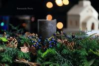 森の香り - バラと遊ぶ庭