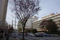 新宿区をぶらぶら その2~東京おもちゃ美術館 - 「趣味はウォーキングでは無い」