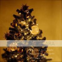 || クリスマスツリーの収納 成功したこと失敗すること || - コレカラ
