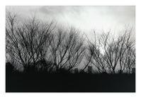 六本木からの眺め - VELFIO
