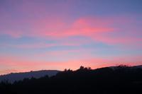 羽ばたき空へ、夕焼けと命の終わり - ペルージャ イタリア語・日本語教師 なおこのブログ - Fotoblog da Perugia